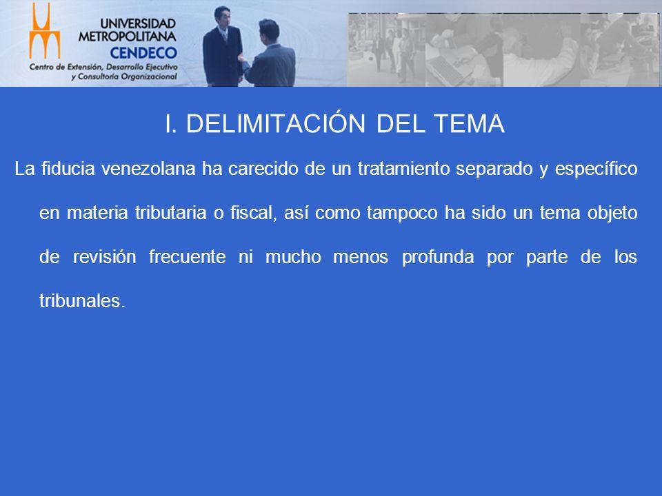 I. DELIMITACIÓN DEL TEMA
