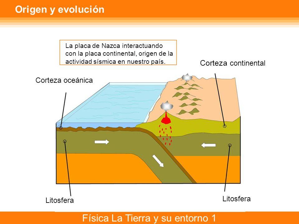 Origen y evolución Corteza continental Corteza oceánica Litosfera