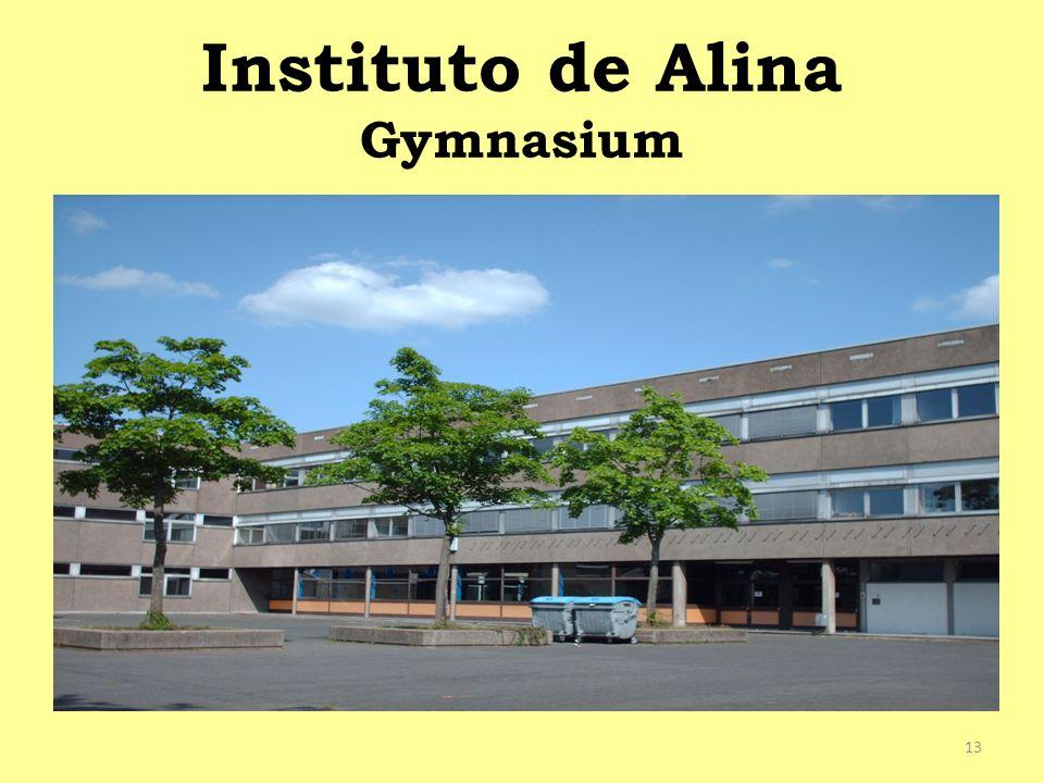 Instituto de Alina Gymnasium
