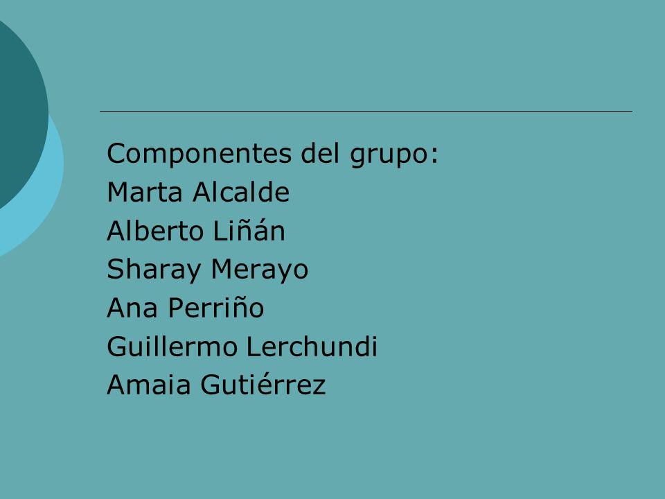 Componentes del grupo: