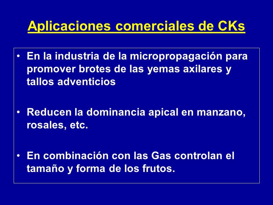 Aplicaciones comerciales de CKs