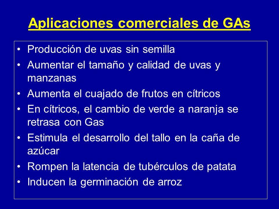 Aplicaciones comerciales de GAs
