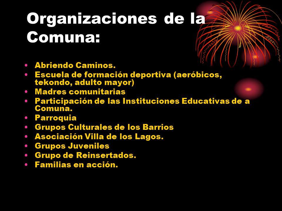 Organizaciones de la Comuna: