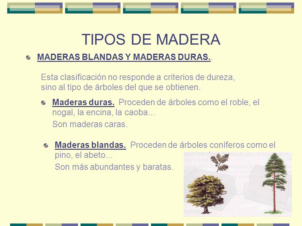 TIPOS DE MADERA MADERAS BLANDAS Y MADERAS DURAS..