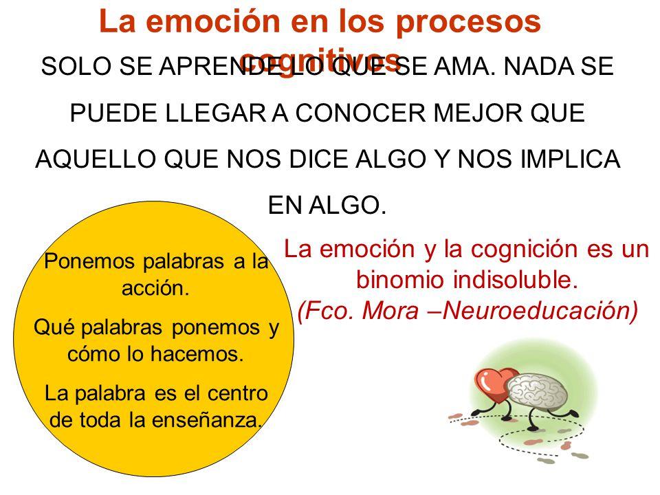 La emoción en los procesos cognitivos