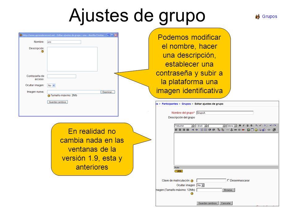 Ajustes de grupoPodemos modificar el nombre, hacer una descripción, establecer una contraseña y subir a la plataforma una imagen identificativa.