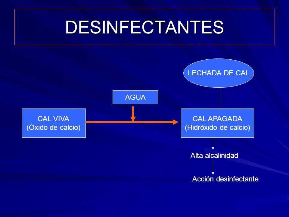 DESINFECTANTES LECHADA DE CAL AGUA CAL VIVA (Óxido de calcio)