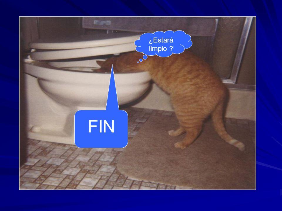¿Estará limpio FIN