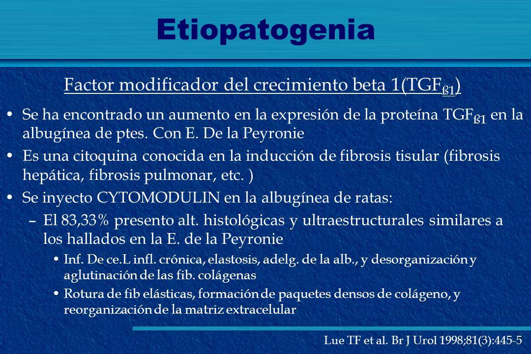 Etiopatogenia Factor modificador del crecimiento beta 1(TGFß1)