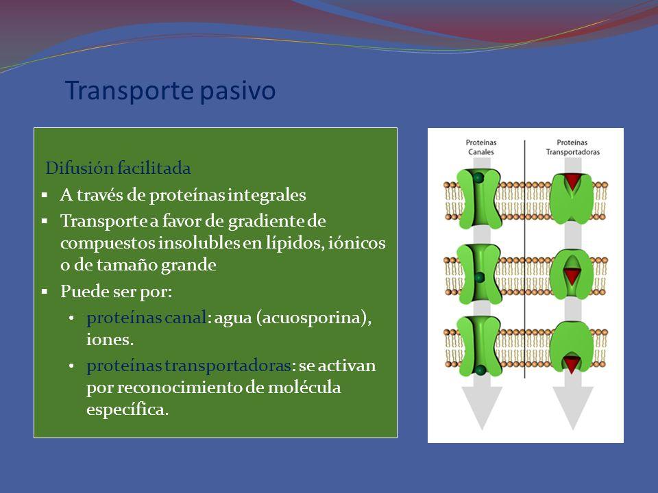 Transporte pasivo Difusión facilitada A través de proteínas integrales