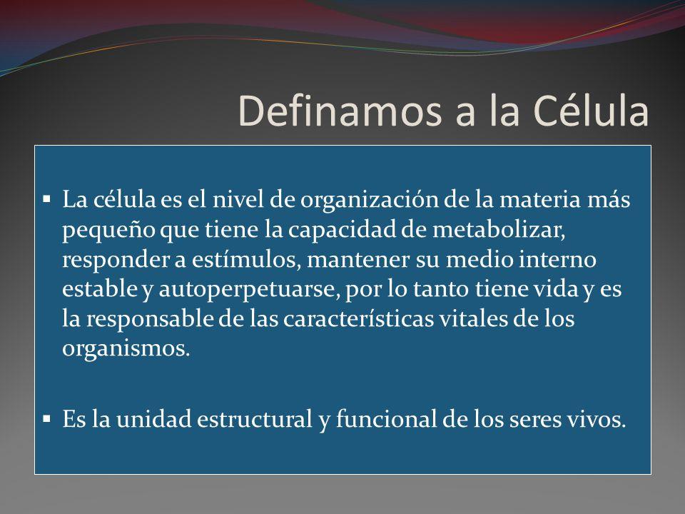 Definamos a la Célula