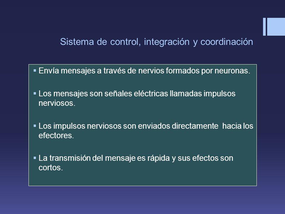 Sistema de control, integración y coordinación
