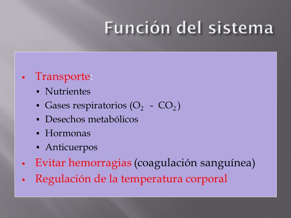 Función del sistema Transporte: