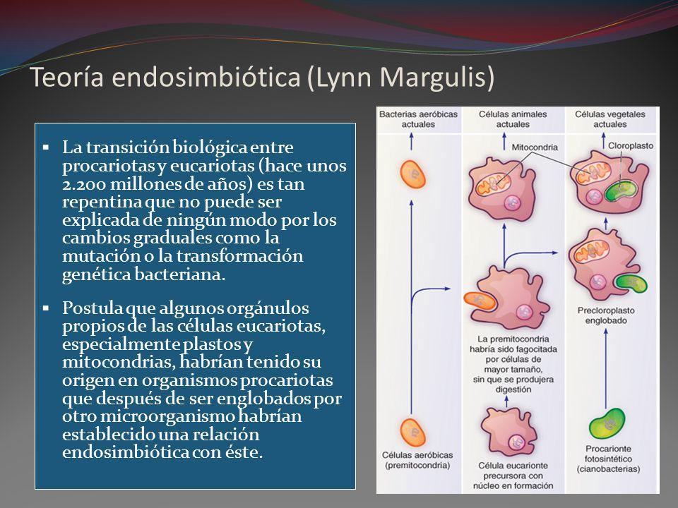 Teoría endosimbiótica (Lynn Margulis)