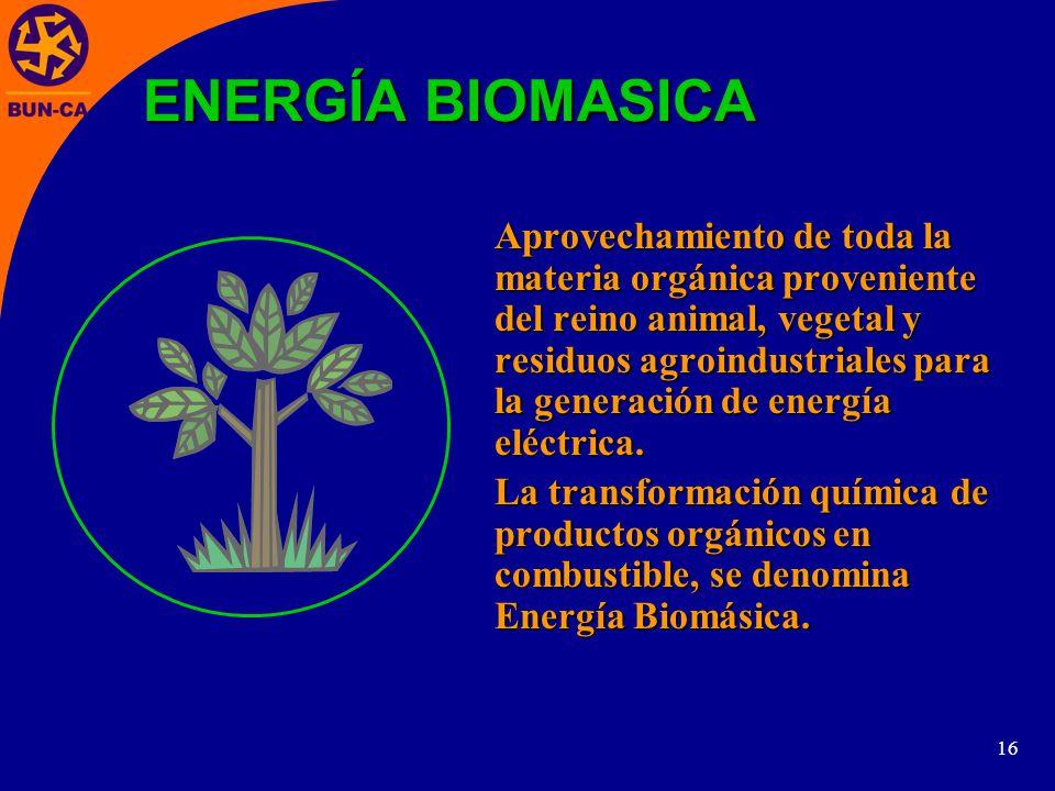 ENERGÍA BIOMASICA