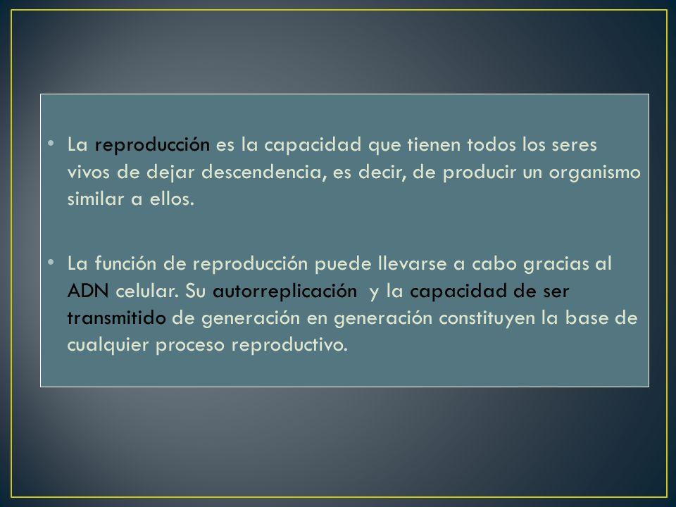 La reproducción es la capacidad que tienen todos los seres vivos de dejar descendencia, es decir, de producir un organismo similar a ellos.