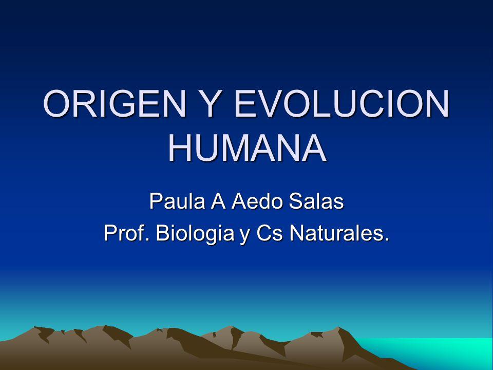 ORIGEN Y EVOLUCION HUMANA