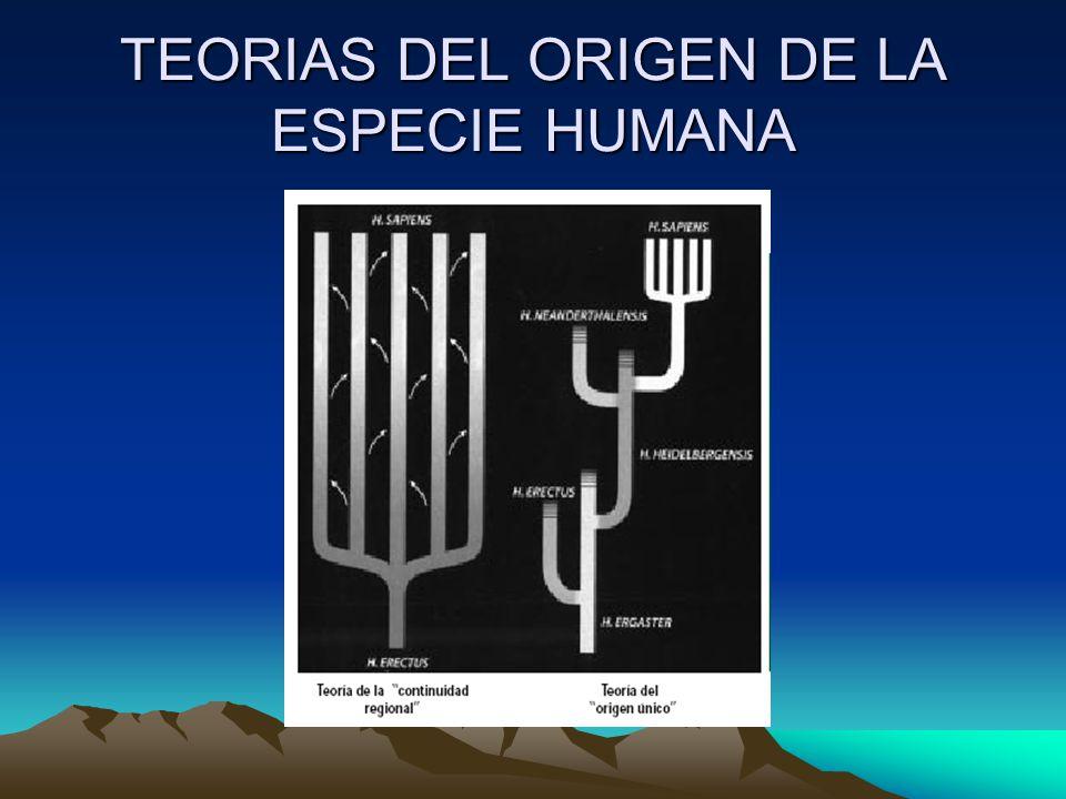 TEORIAS DEL ORIGEN DE LA ESPECIE HUMANA