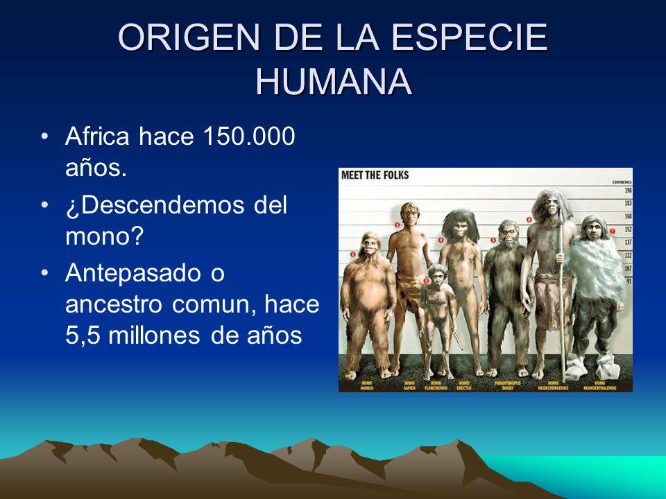 ORIGEN DE LA ESPECIE HUMANA