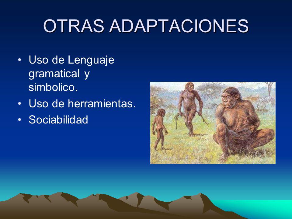OTRAS ADAPTACIONES Uso de Lenguaje gramatical y simbolico.