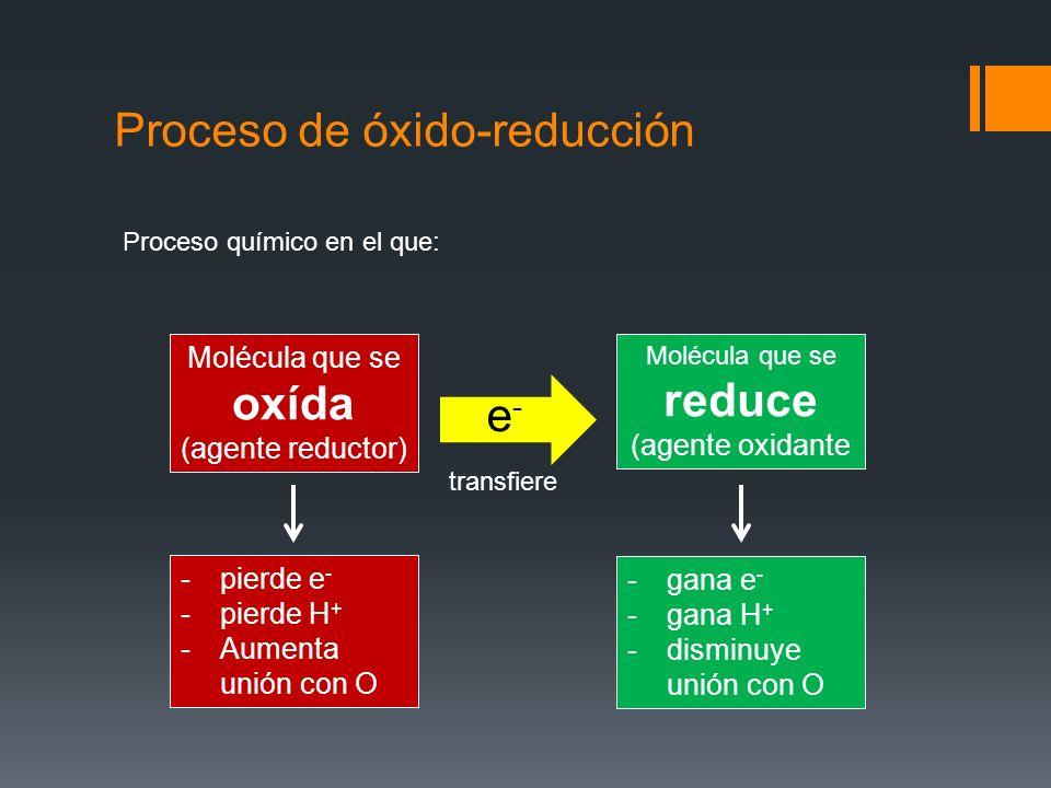 Proceso de óxido-reducción