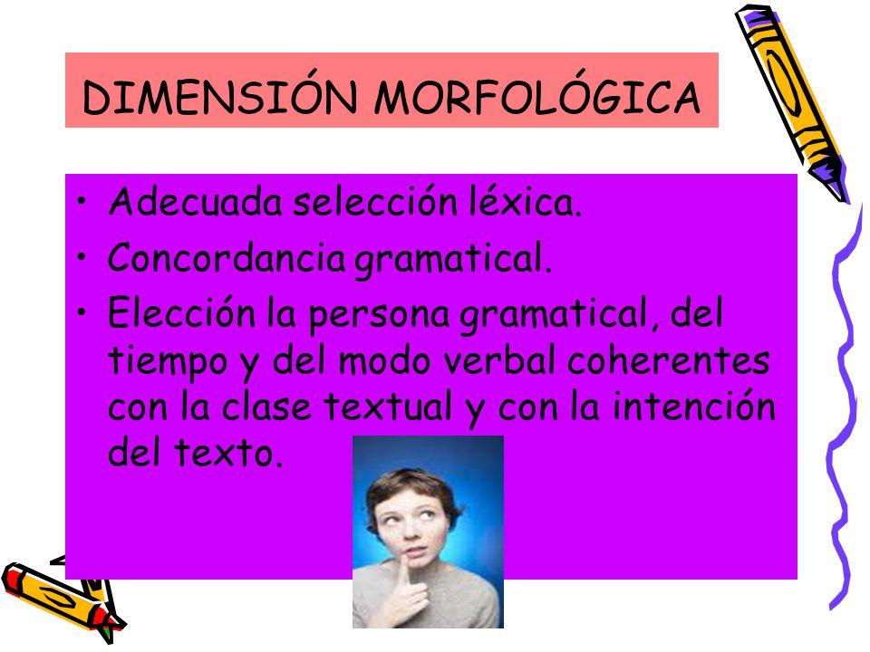 DIMENSIÓN MORFOLÓGICA