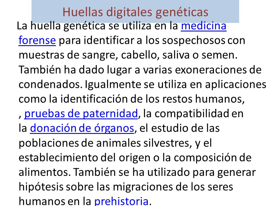 Huellas digitales genéticas