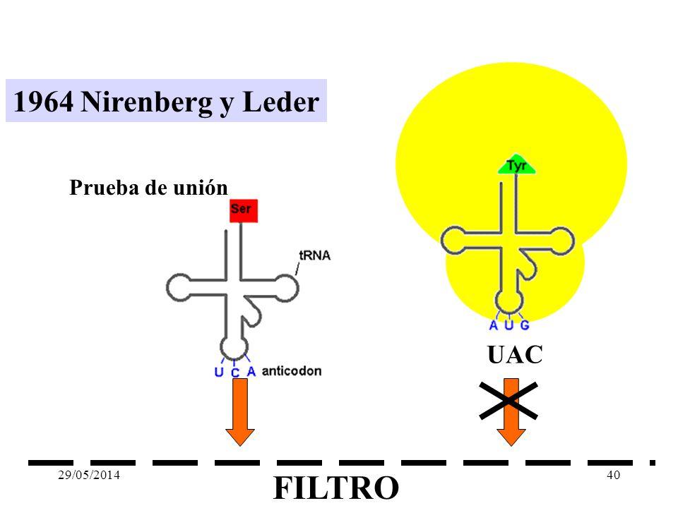 1964 Nirenberg y Leder Prueba de unión UAC 31/03/2017 FILTRO