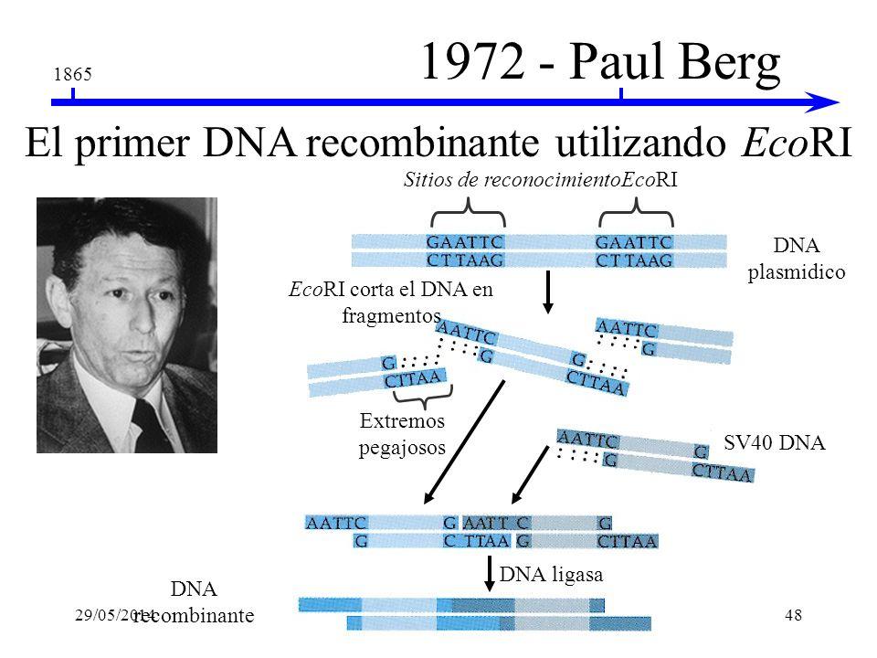 1972 - Paul Berg El primer DNA recombinante utilizando EcoRI