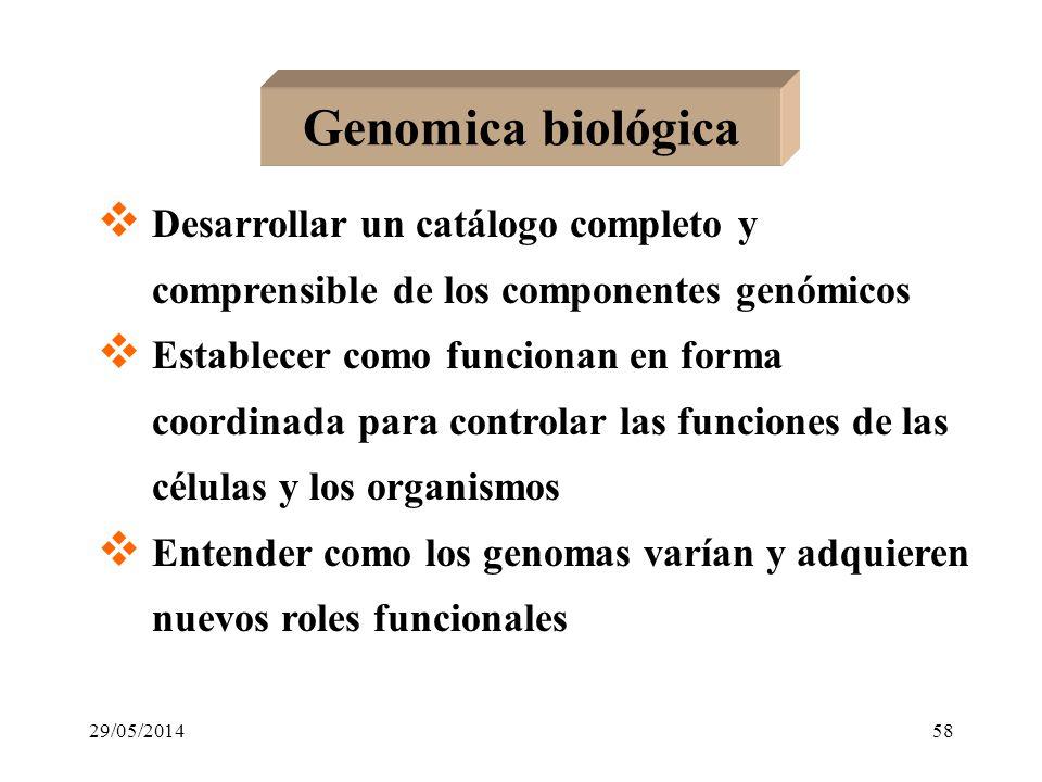 Genomica biológica Desarrollar un catálogo completo y comprensible de los componentes genómicos.