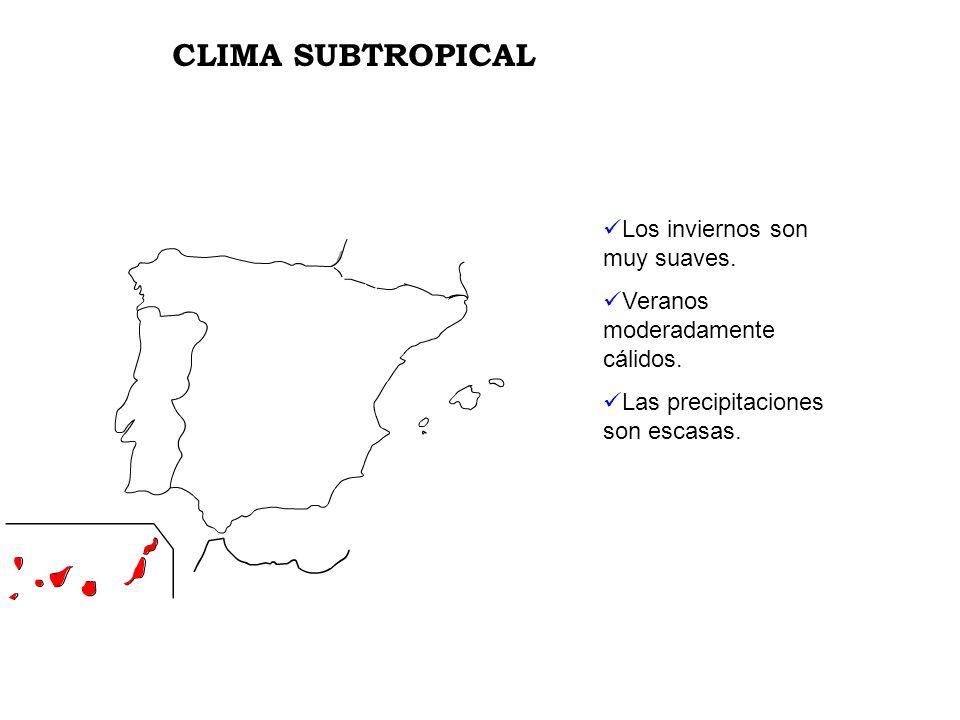 CLIMA SUBTROPICAL Los inviernos son muy suaves.
