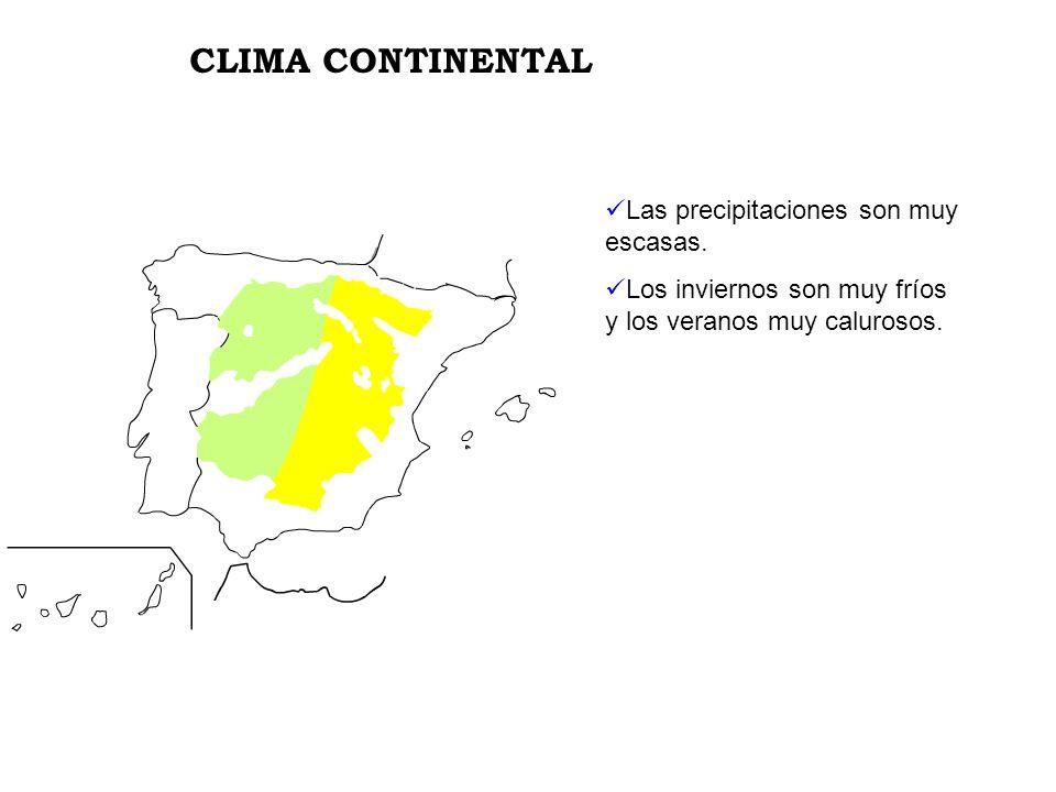 CLIMA CONTINENTAL Las precipitaciones son muy escasas.