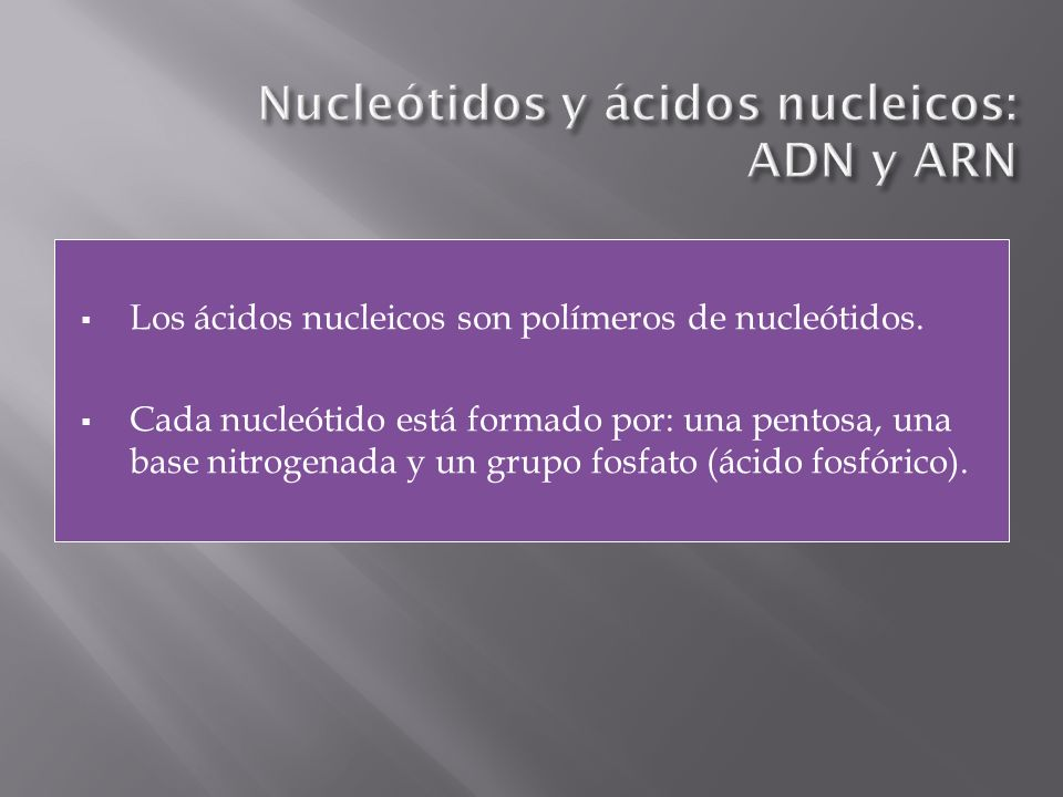Nucleótidos y ácidos nucleicos: ADN y ARN
