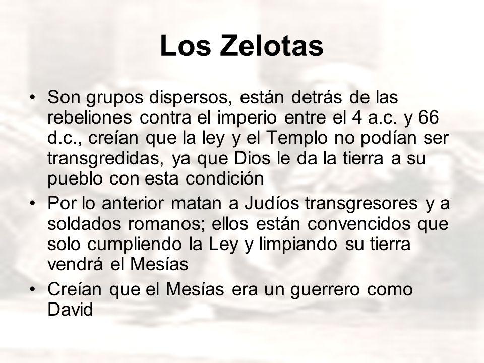 Los Zelotas