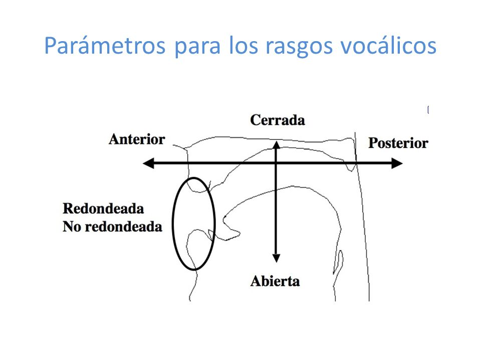 Parámetros para los rasgos vocálicos