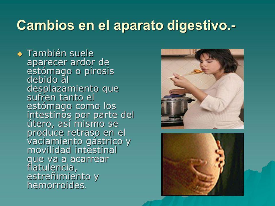 Cambios en el aparato digestivo.-