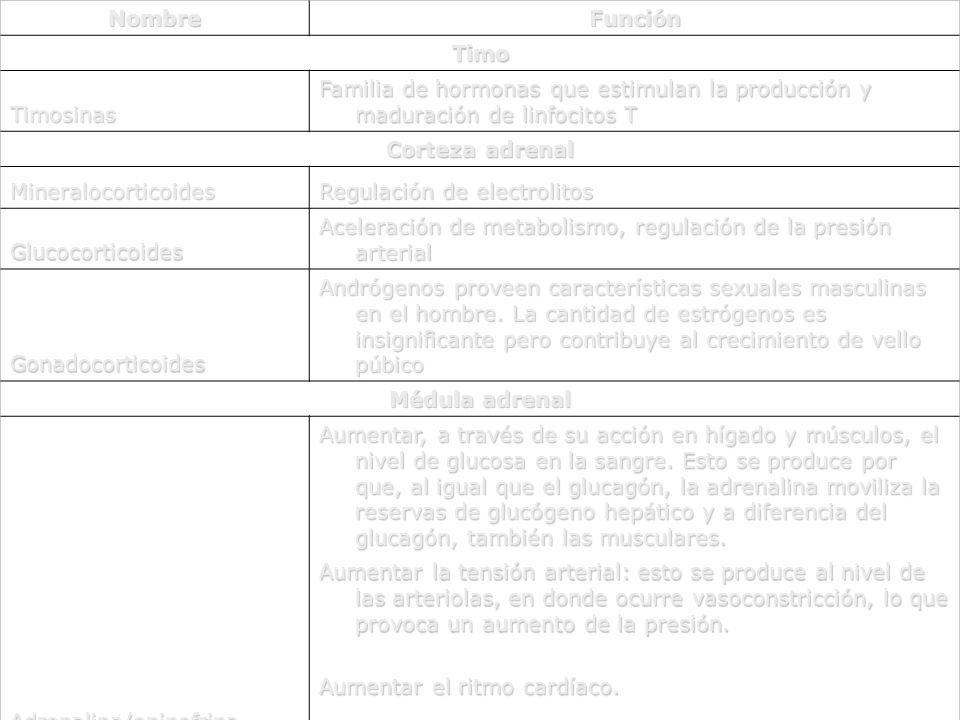 Nombre Función. Timo. Timosinas. Familia de hormonas que estimulan la producción y maduración de linfocitos T.