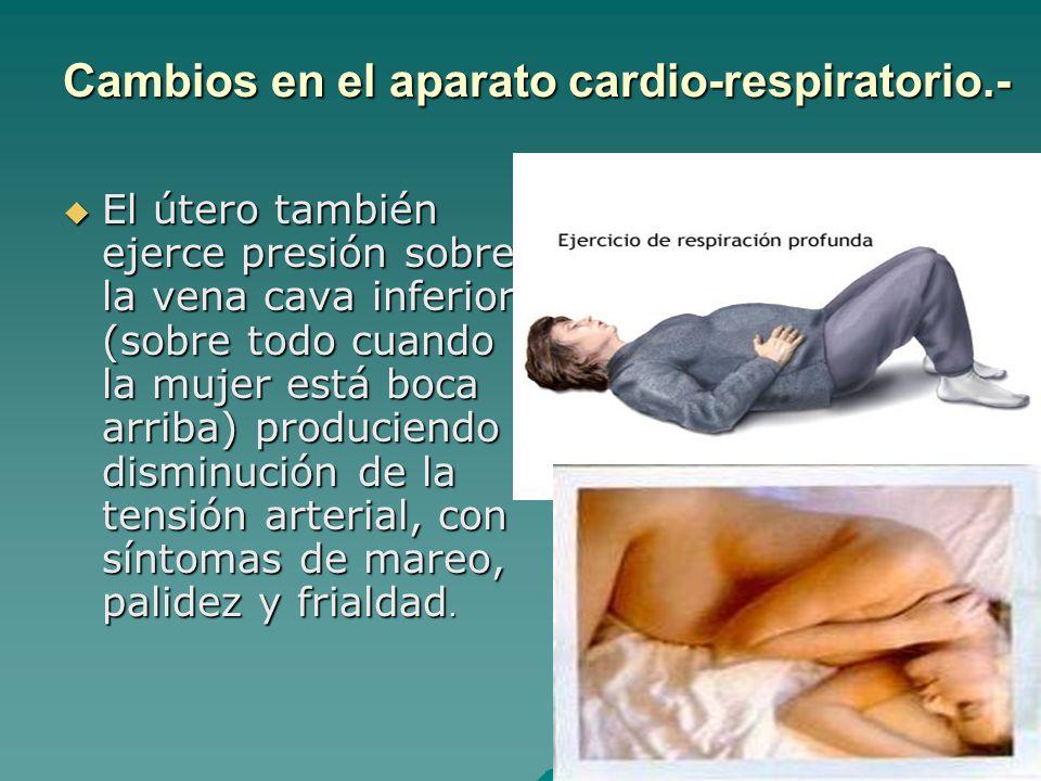 Cambios en el aparato cardio-respiratorio.-