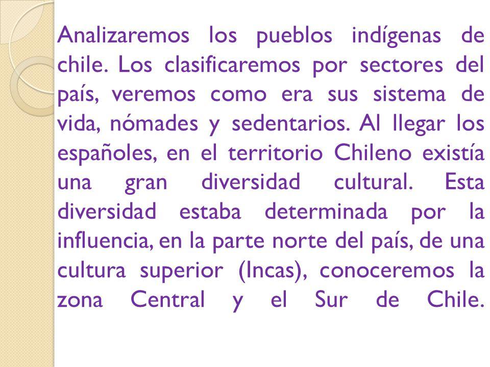 Analizaremos los pueblos indígenas de chile