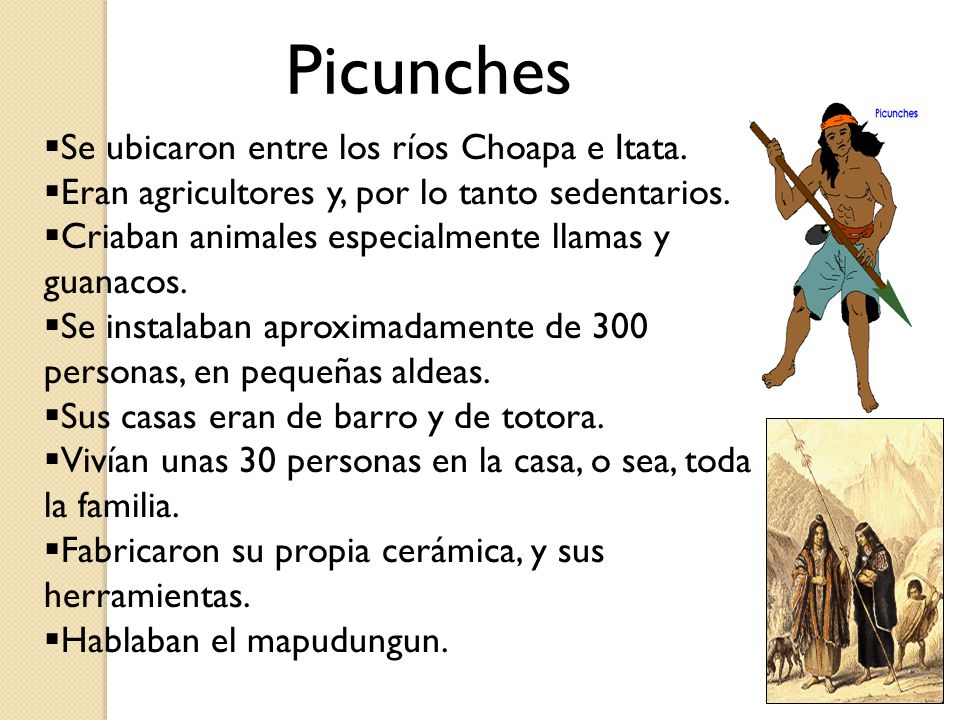 Picunches Se ubicaron entre los ríos Choapa e Itata.
