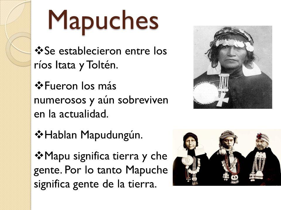 Mapuches Se establecieron entre los ríos Itata y Toltén.
