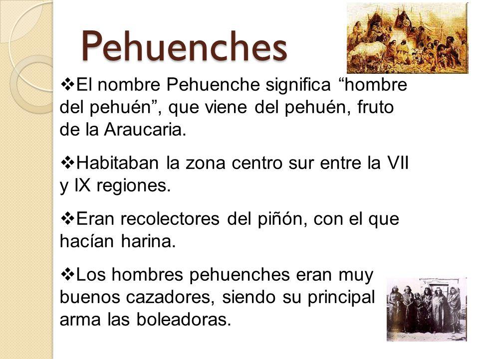 Pehuenches El nombre Pehuenche significa hombre del pehuén , que viene del pehuén, fruto de la Araucaria.