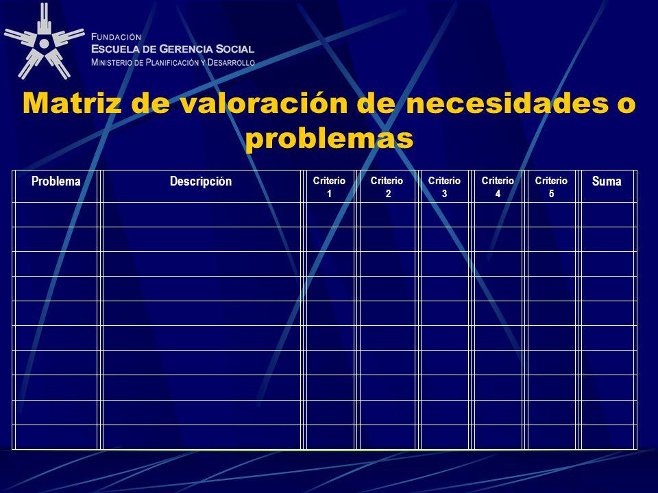 Matriz de valoración de necesidades o problemas