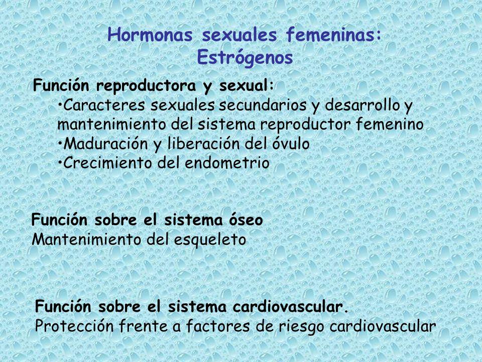 Hormonas sexuales femeninas: