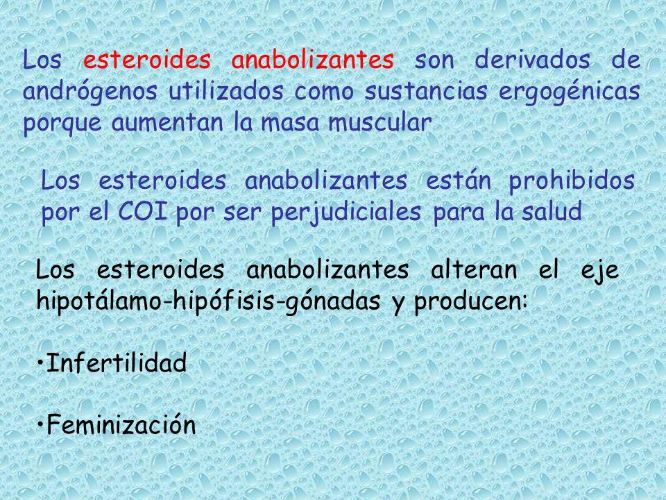 Los esteroides anabolizantes son derivados de andrógenos utilizados como sustancias ergogénicas porque aumentan la masa muscular