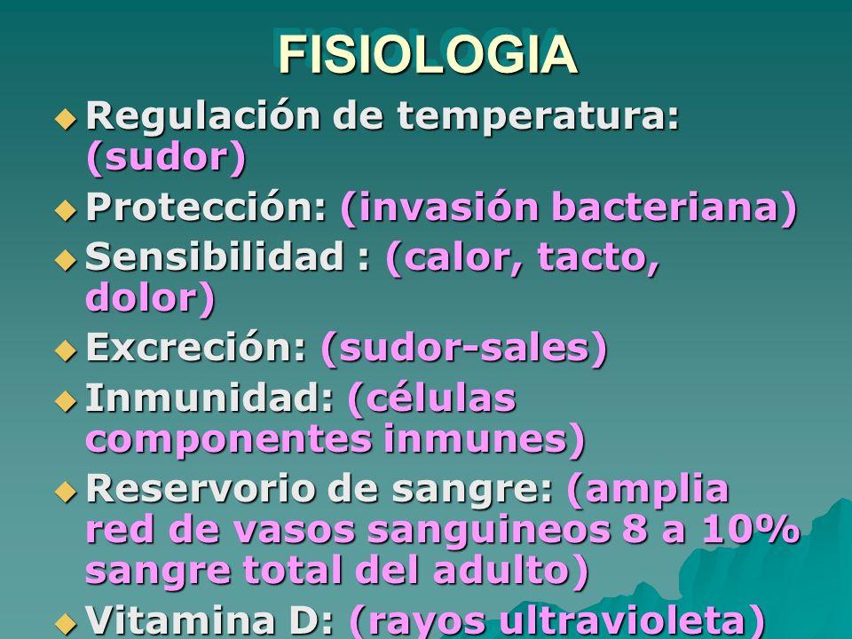 FISIOLOGIA Regulación de temperatura: (sudor)