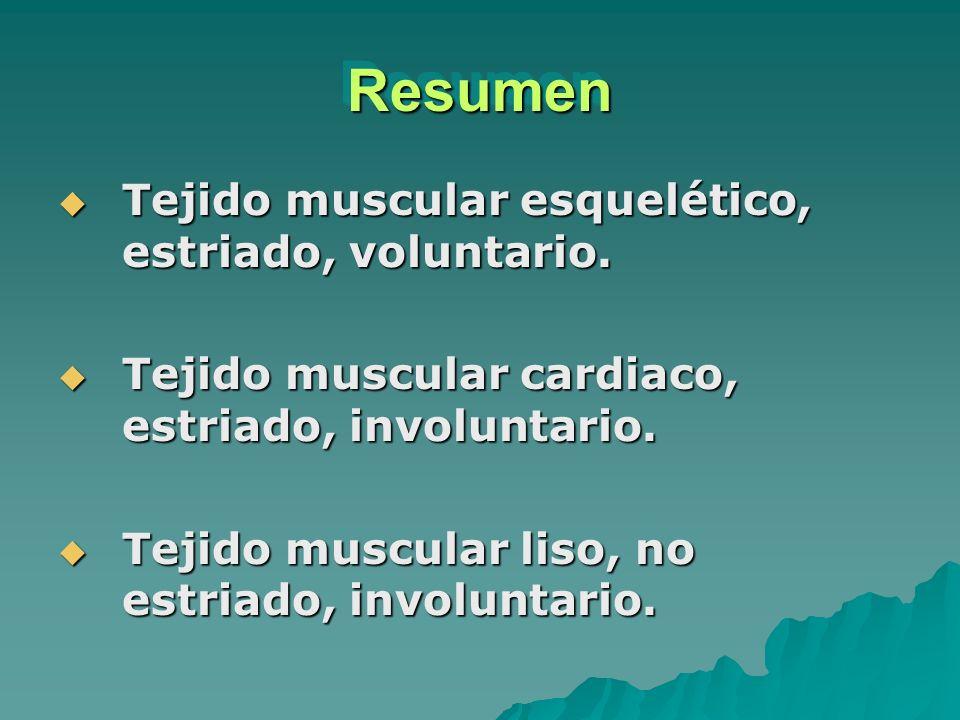 Resumen Tejido muscular esquelético, estriado, voluntario.
