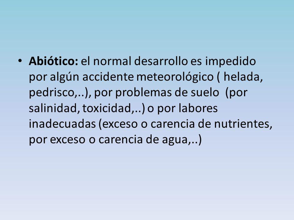 Abiótico: el normal desarrollo es impedido por algún accidente meteorológico ( helada, pedrisco,..), por problemas de suelo (por salinidad, toxicidad,..) o por labores inadecuadas (exceso o carencia de nutrientes, por exceso o carencia de agua,..)