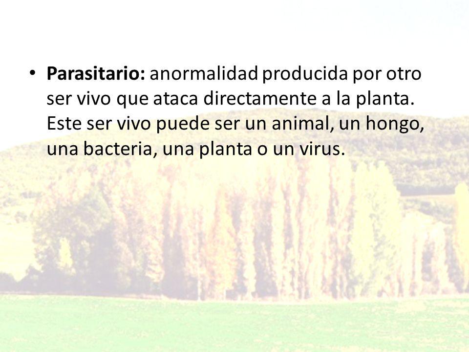 Parasitario: anormalidad producida por otro ser vivo que ataca directamente a la planta.
