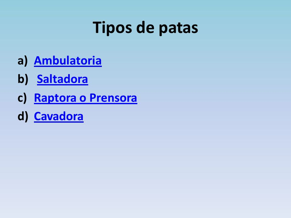 Tipos de patas Ambulatoria Saltadora Raptora o Prensora Cavadora